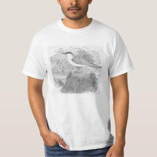 Andorinha-do-mar do baixo custo em uma camisa do t-shirt