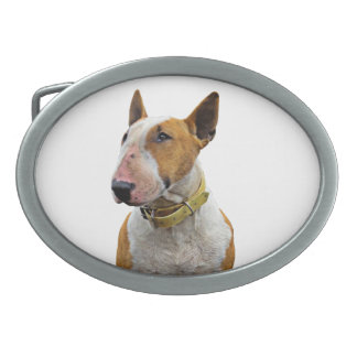 Anel de cintura - Desenho Bull terrier