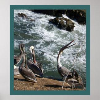 Animais dos animais selvagens dos pássaros do pôster