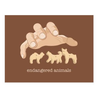 Animais pstos em perigo cartão postal
