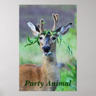 Animal de partido poster