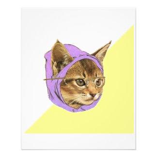 Animal Meme do conselho do gato do gatinho do hips Flyer 11.43 X 14.22cm