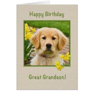 Aniversário, excelente - neto, cão do golden cartão comemorativo