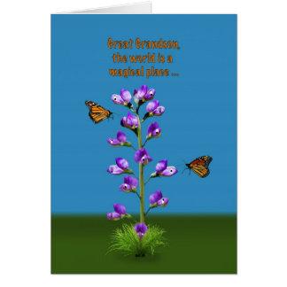 Aniversário, excelente - neto, flores e borboletas cartoes