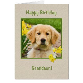 Aniversário, neto, cão do golden retriever cartão comemorativo