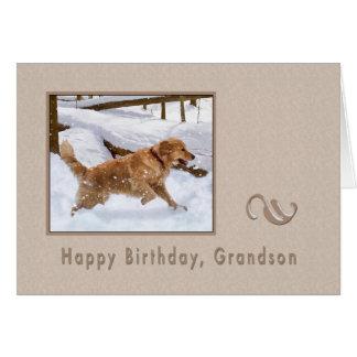 Aniversário, neto, cão do golden retriever na neve cartão comemorativo