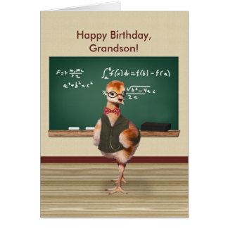 Aniversário, neto, pássaro de bebê, customizável cartão comemorativo
