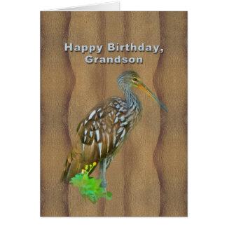 Aniversário, neto, pássaro do pântano de Limpkin Cartão Comemorativo