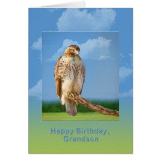 Aniversário, neto, pássaro equipado com pernas cartão comemorativo