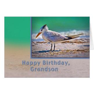 Aniversário, neto, pássaro real da cartão comemorativo
