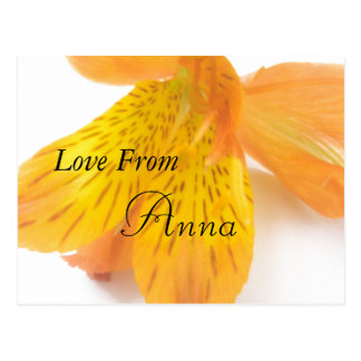 Anna Cartão Postal