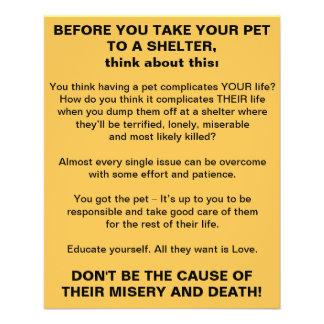 Antes que você tomar seu animal de estimação a um flyer 11.43 x 14.22cm