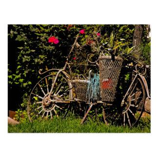 Antiguidade da arizona cartão postal