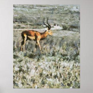 Antílope selvagem em uma pintura animal do prado poster