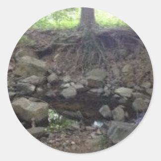 Antro do Fox da árvore Adesivo