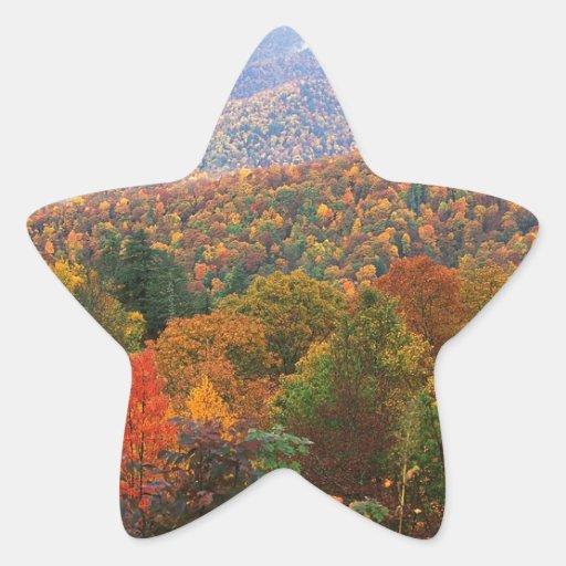 Appalachian luxúria Carolina da paisagem da cena Adesivos Estrelas