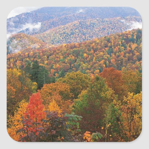 Appalachian luxúria Carolina da paisagem da cena Adesivo Em Forma Quadrada