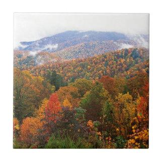 Appalachian luxúria Carolina da paisagem da cena Azulejo De Cerâmica
