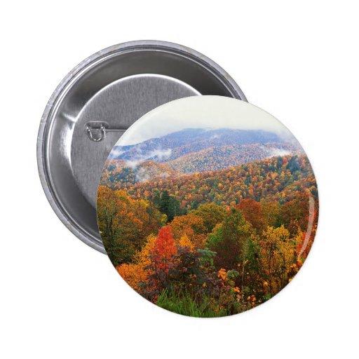 Appalachian luxúria Carolina da paisagem da cena Boton
