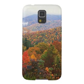 Appalachian luxúria Carolina da paisagem da cena