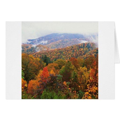 Appalachian luxúria Carolina da paisagem da cena Cartao