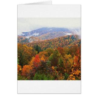 Appalachian luxúria Carolina da paisagem da cena Cartão
