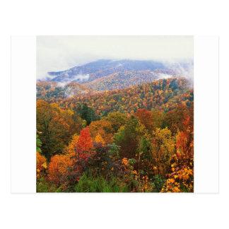 Appalachian luxúria Carolina da paisagem da cena Cartão Postal