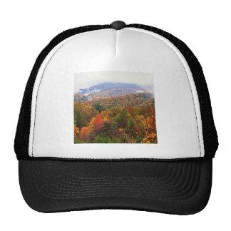 Appalachian luxúria Carolina da paisagem da cena Boné