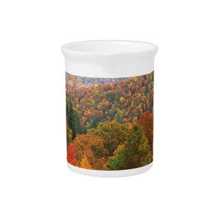 Appalachian luxúria Carolina da paisagem da cena Jarro De Bebida