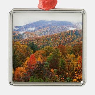 Appalachian luxúria Carolina da paisagem da cena Enfeites