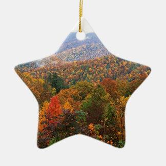 Appalachian luxúria Carolina da paisagem da cena Enfeites Para Arvore De Natal
