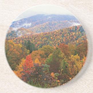 Appalachian luxúria Carolina da paisagem da cena Porta-copo