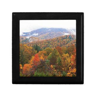 Appalachian luxúria Carolina da paisagem da cena Estojo Para Jóia