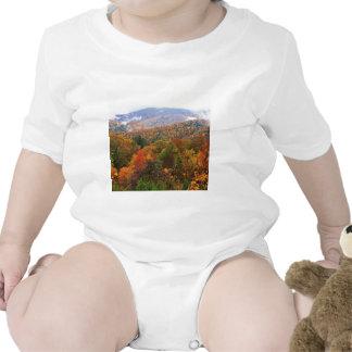 Appalachian luxúria Carolina da paisagem da cena T-shirts