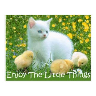 Aprecie os animais bonitos das coisas pequenas cartão postal