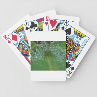 Aproximado dentro baralhos de poker