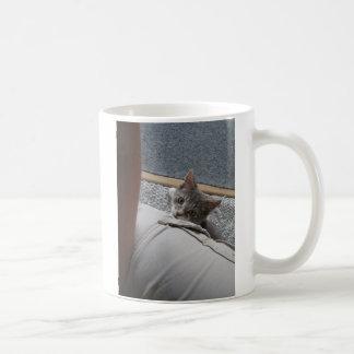 aqui gatinho do gatinho do gatinho caneca de café