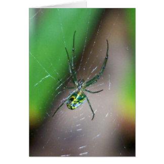Aranha do tecelão da esfera do pomar cartão