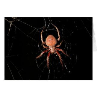 Aranha manchada do tecelão da esfera cartão comemorativo