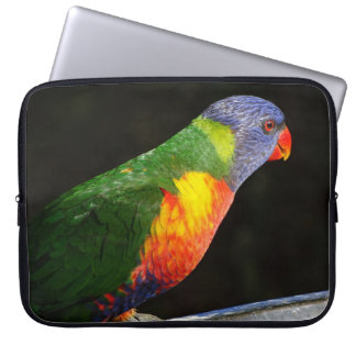 Arco-íris australiano Lorikeet Sleeve Para Notebook