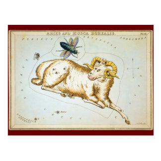 Aries e Musca Borealis Cartão Postal
