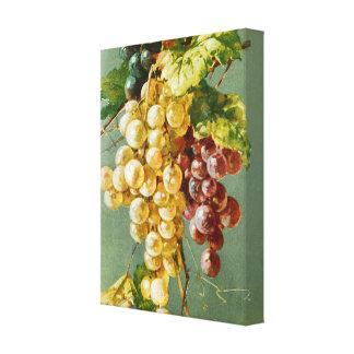 Arte bonita do vintage das uvas impressão de canvas envolvida