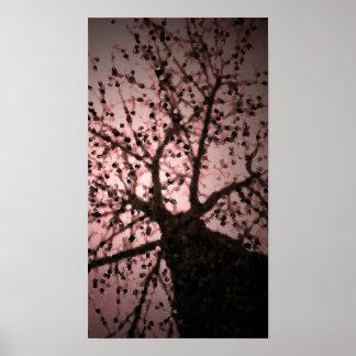 Arte cor-de-rosa da foto da árvore pôster