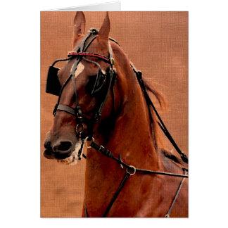 Arte de Saddlebred Digital do chicote de fios do p Cartoes
