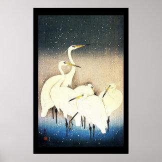 Arte de Ukiyo-e Woodblock - animais - Egrets Poster