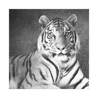 Arte do tigre Siberian em preto e branco - canvas Impressão De Canvas Esticada