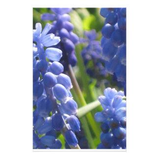 Artigos de papelaria - jacinto de uva
