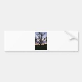 árvore adesivo para carro