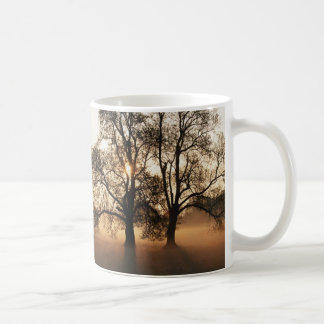 Árvore Caneca