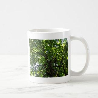 Árvore Caneca De Café